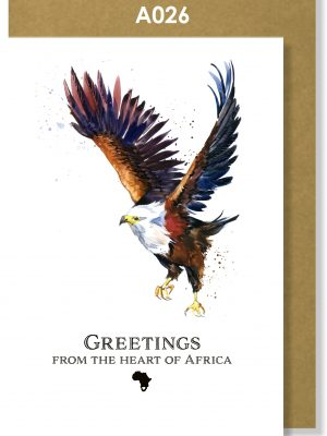 Greeting Card, Fish Eagle, African, Eagle, Bird