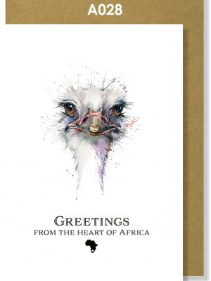 Greeting Card, Ostrich, African, Bird