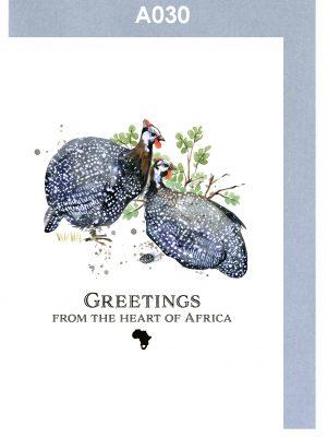 Greeting card, Guinea Fowl, African, Bird