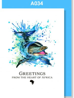 Greeting Card, Dolphin, South Africa