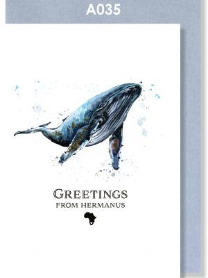 Greeting Card, Whale, Hermanus, South Africa