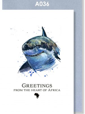 Greeting Card, Shark, Great White, South Africa