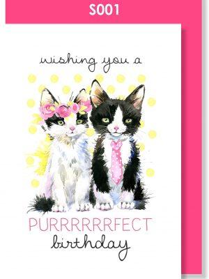 Handmade Birthday Card, cute, kitties