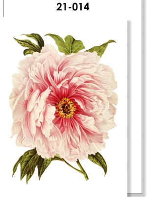 Handmade Card, Botanical Floral